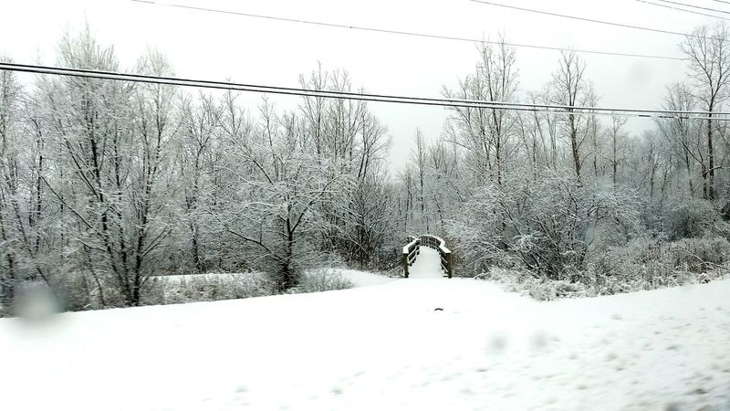 Snow Snow ❄ Weather Michigan Winter Winter Wonderland Wintertime Bridge No People Cold Temperature Outdoors Day Nature Tree Landscape