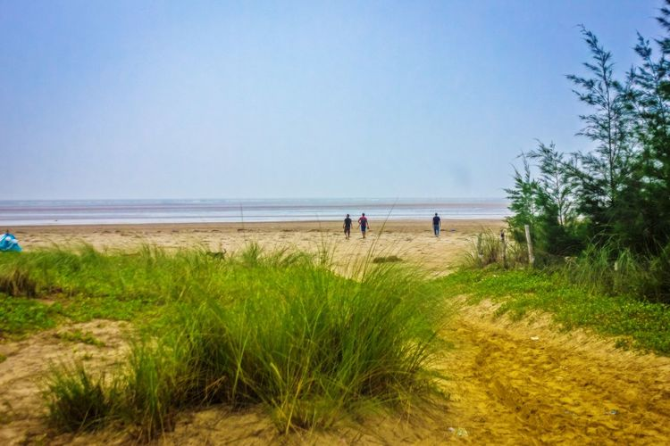 seascape Sand