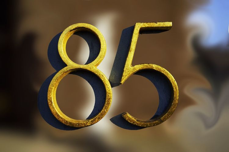 Close-up of number 85