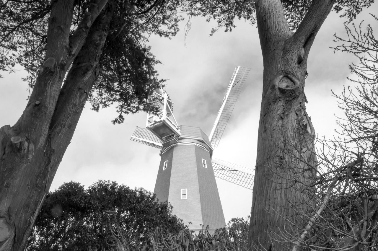 Low Angle View Of Trees By Traditional Windmill
