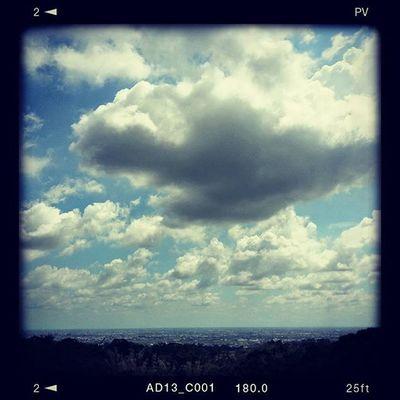 軟綿綿… Sky Me 流浪 彰化