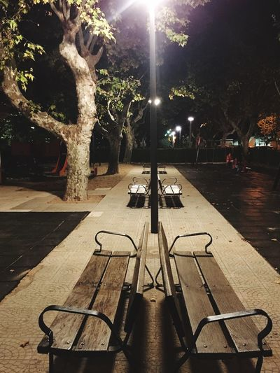 Parkbench Illuminated Tree Night Nature Plant Street Incidental People City Architecture Lighting Equipment Seat Park Outdoors Park - Man Made Space Street Light Empty Bench Built Structure