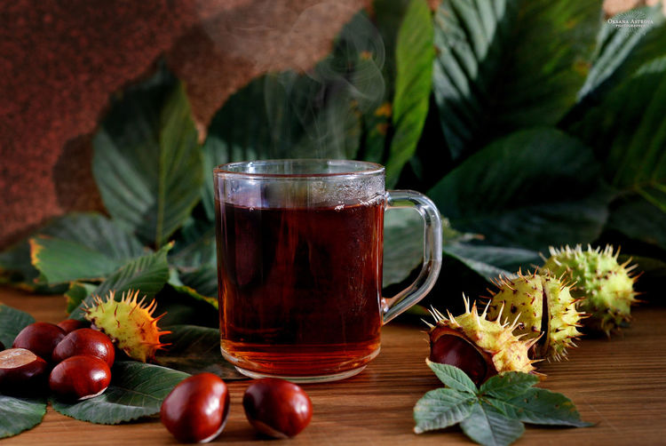 What can be better than some hot tea in the autumn afternoon? Only a tea with cookie under a plaid))) Chestnut Chestnuts Close-up Day Drink Flower Food Food And Drink Freshness Healthy Eating Indoors  Leaf Nature No People Plant Refreshment Table
