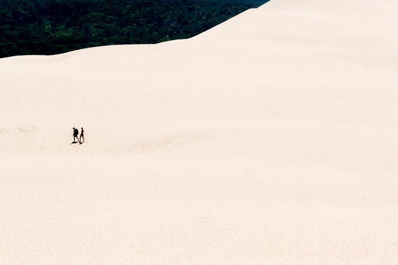 High Angle View Of People Walking On Sand At Desert