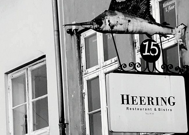 Copenhagen, Denmark Copenhagen Signs Harbourside Fish Denmark Street Black And White Photography Nyhavn Sailfish