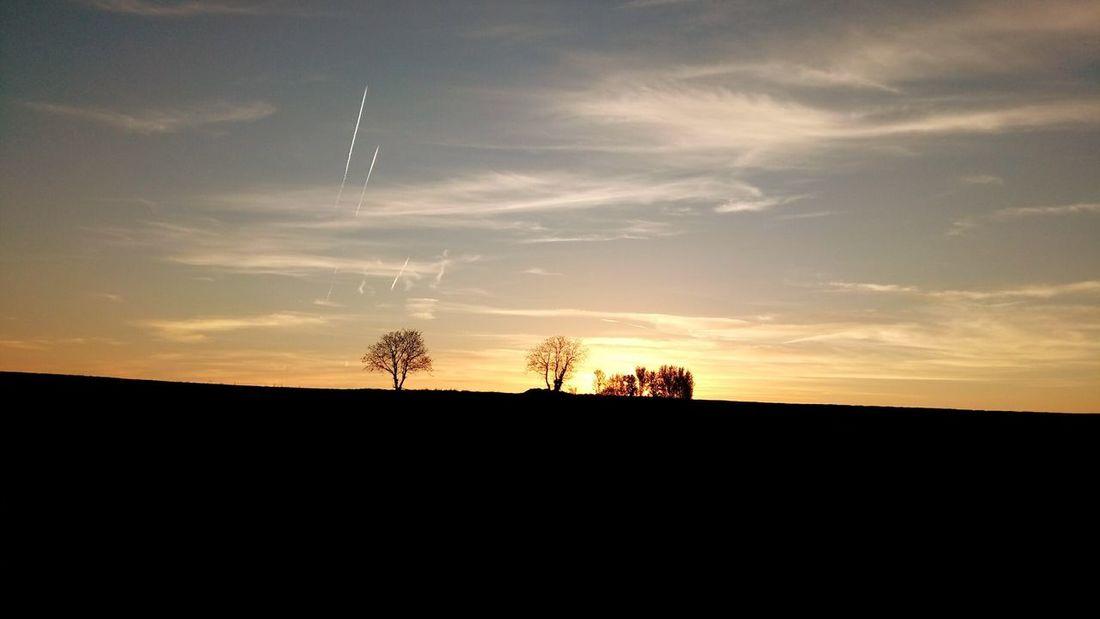 Tree Electricity Pylon Sunset Silhouette Rural Scene Sky Landscape Cloud - Sky