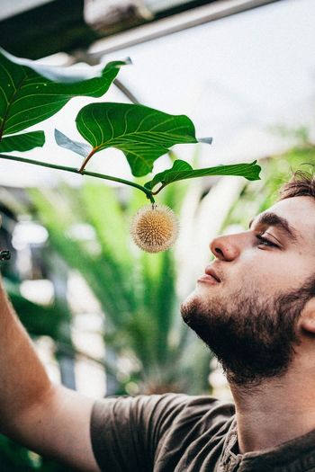 Close-Up Of Man Looking At Flower On Plant