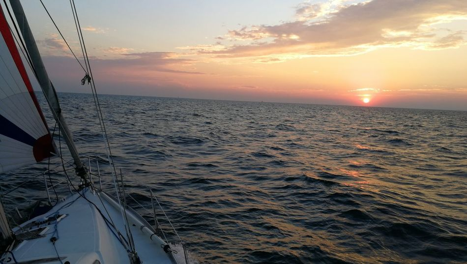 Sailing Sail Sailsunset City Water Nautical Vessel Sea Sunset Cityscape Urban Skyline Steel Horizon Yacht
