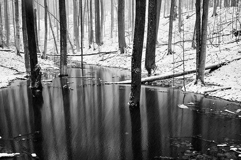 Snow exposure https://goo.gl/YZJXlu Reimerpics Snow Nature Landscape Photography Lines Canada Prettyriverpark Plantshit Ontario Blackandwhite Georgianbay Water Reflection