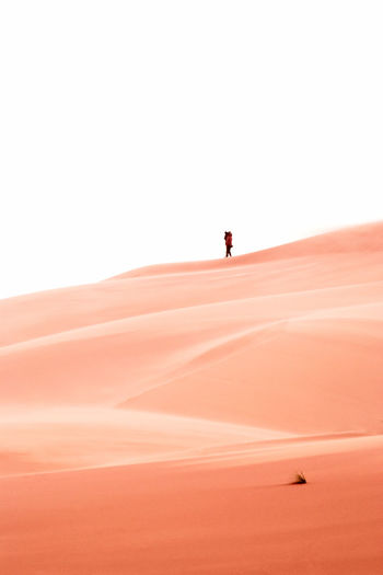 Just go togheter and left beyond Walking Desert Couple - Relationship Imagination Philosophy Thinking Scenics Scenics - Nature Climate Sand Dune Arid Climate Beauty In Nature Nature Copy Space Outdoors Sand Sky Fine Art Morocco Travel Morocco Desert Minimalism Minimalistic