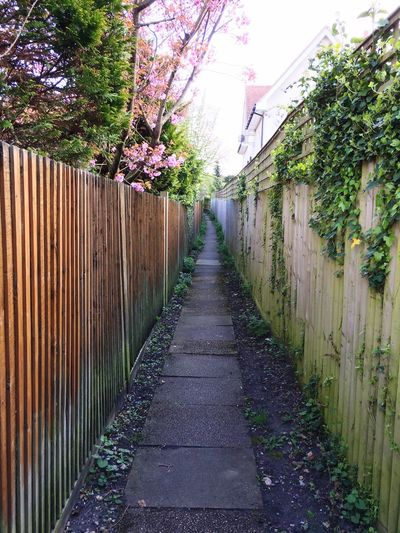 A shortcut The Way Forward Built Structure Architecture No People Day Building Exterior Outdoors Walkway Nature Sky