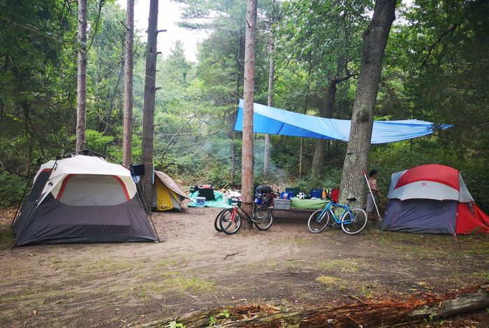 Bikes Bicycles Camping Tent Pinery Provincial Park Tarp Three Tents Tree Bicycle Shelter Sky