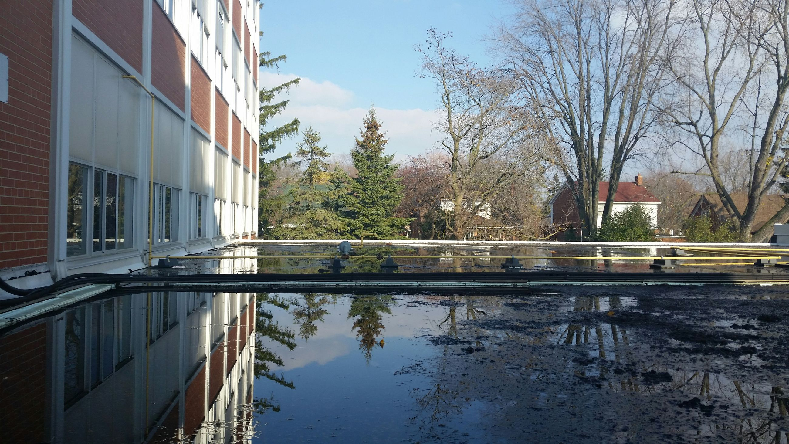 reflection, architecture, built structure, water, tree, building exterior, canal, bare tree, waterfront, sky, connection, river, day, standing water, building, residential building, bridge - man made structure, outdoors, railing, no people