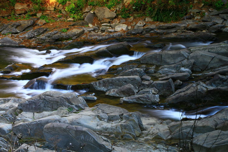 Rock Water Rock - Object Solid Flowing Water Motion Long Exposure Nature Blurred Motion River Beauty In Nature No People Forest Stream - Flowing Water Flowing Day Land Tree Outdoors Purity Pollution Shallow
