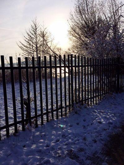 Deepfreeze EyeEm Best Shots Winter Wonderland Urban Escape Snow