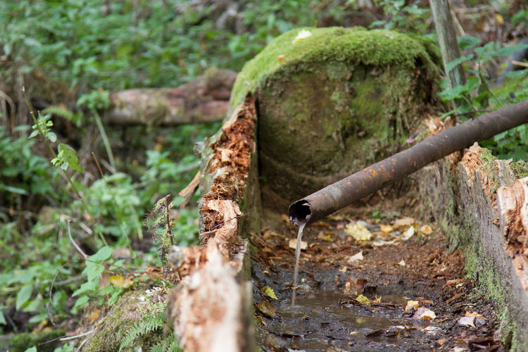 Life Spring Water Nature Needs Outdoors Pipe - Tube Rusty Spring Water