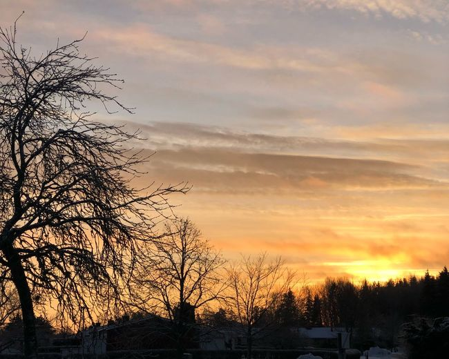 Beautiful sunset in Sweden Outdoors Cold Temperature Cloud - Sky Winter Landscape Day No People