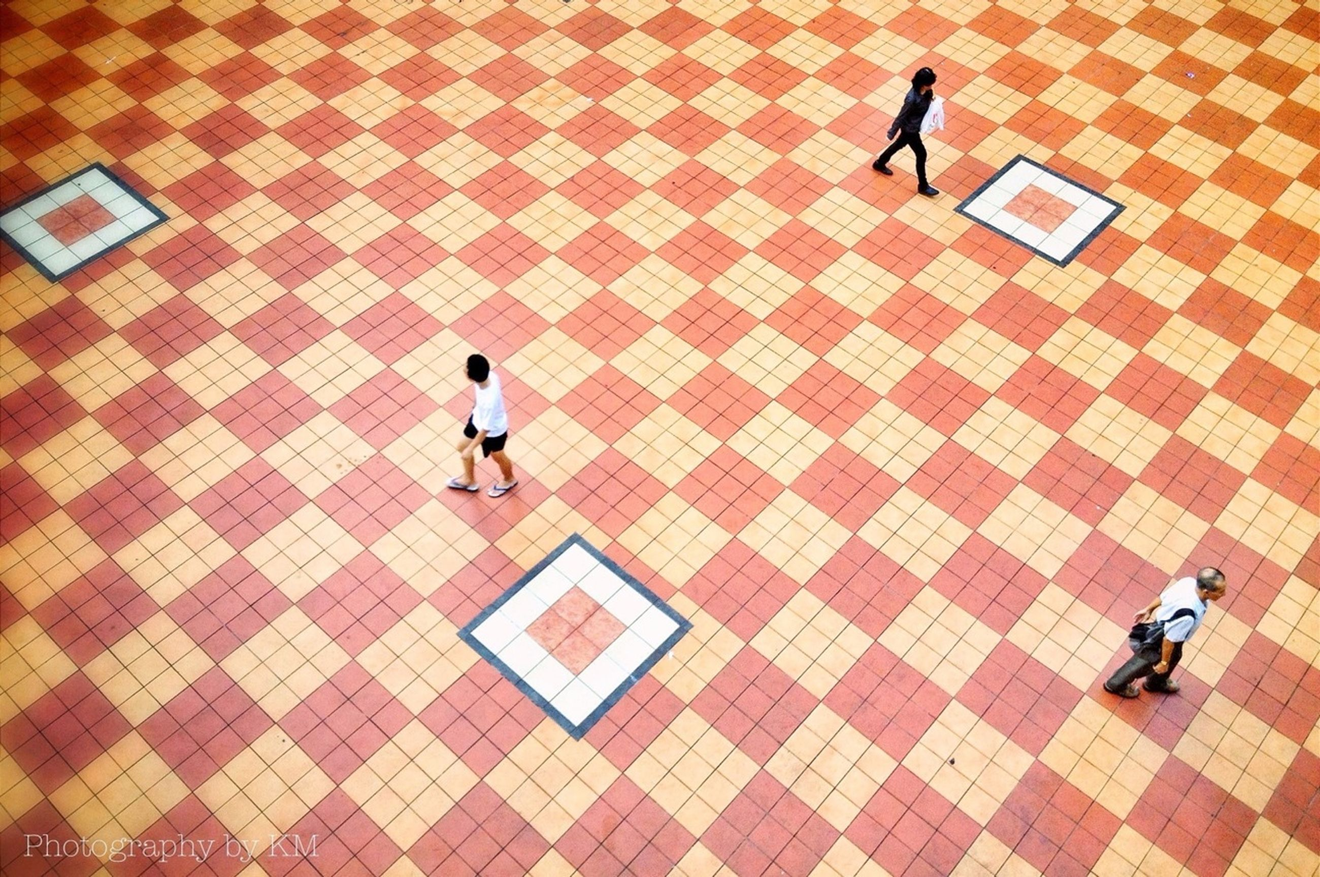 tiled floor, bird, walking, full length, high angle view, flooring, cobblestone, shadow, men, tile, lifestyles, pavement, animal themes, paving stone, pattern, indoors, leisure activity, footpath