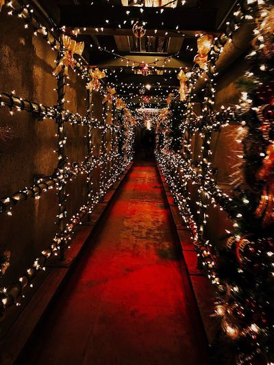 Christmas lights Tunnel Red Lights And Shadows Lights In The Dark Illuminated The Way Forward Indoors  Lighting Equipment Celebration Shiny Night No People