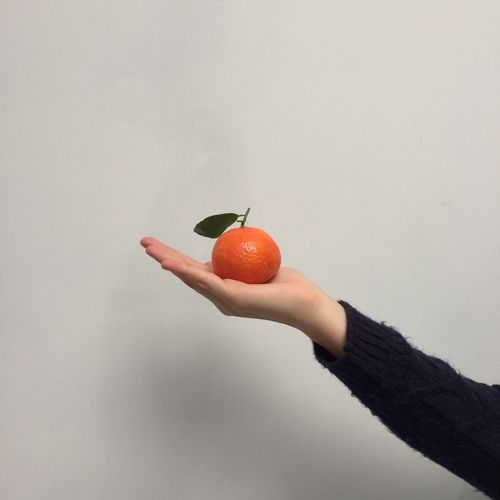 Cropped image of woman holding orange fruit against white wall