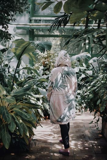 Rear View Of Mid Adult Woman Walking By Plants In Greenhouse