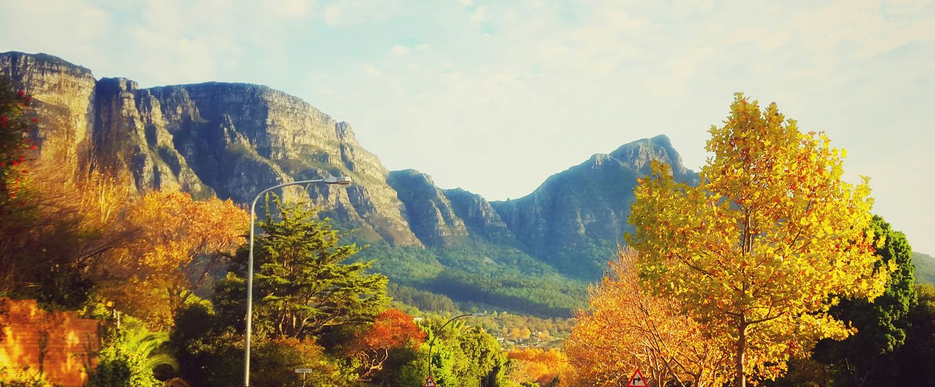 Commute from Constantia to Newlands Capetown