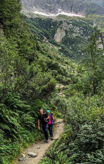 Plant Hiking
