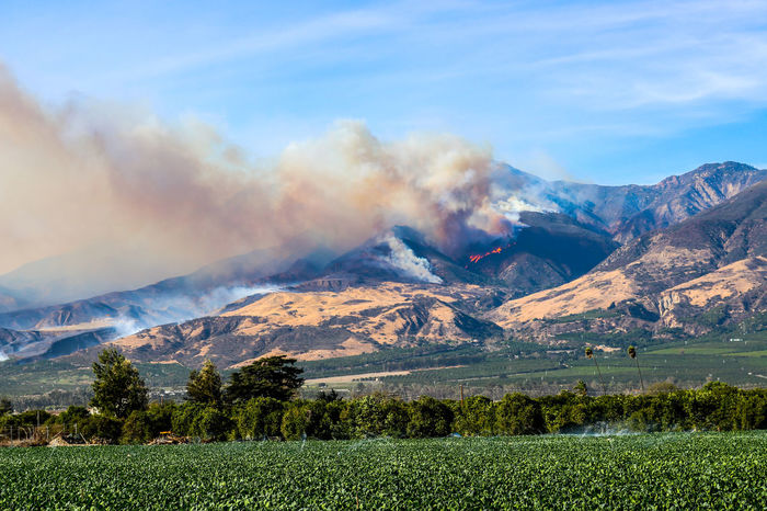 Thomas Fire burns hillside above city of Fillmore in Ventura County California Burning California Flame Helicopter Smoke Thomas Fire Ventura County Fire Fire Fighter Landscape Mountain Mountain Range Mountains Nature Outdoors Scenics Smoke - Physical Structure Wildfire