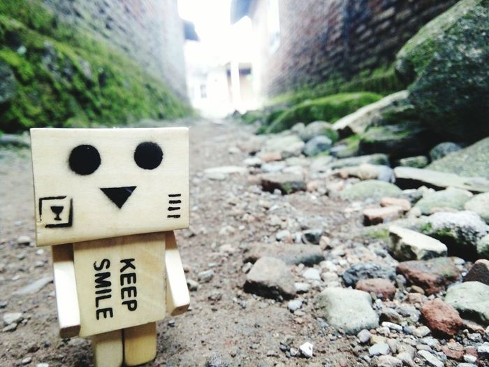 Danbo Sad Doll