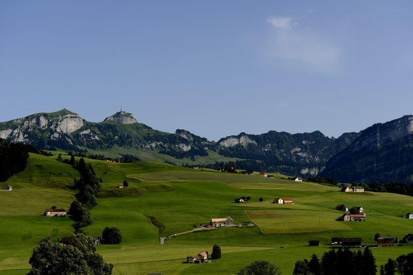 Aussicht Heimat Heimatliebe Panorama Schweiz Schweizer Alpen Appenzellerland Saentis Wiesen