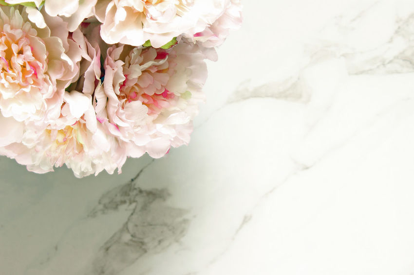 Peonies Border Botany Bouquet Bridal Desktop Elegant Floral Floral Frame Florist Flowers Frame Fresh Mock Up Overhead Overlay Pastel Petals Pink Romantic Soft Light Spring Styled Template Wedding White Marble