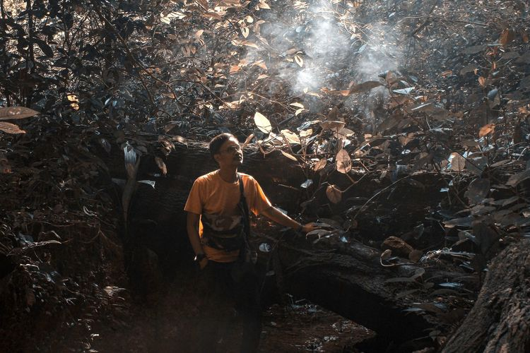 High angle view of man standing in forest by smoke