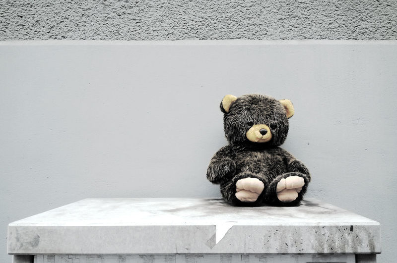 Lost Wall Childhood Close-up Day Furry Hairy  No People Solitary Moments Stuffed Toy Teddy Bear Toy