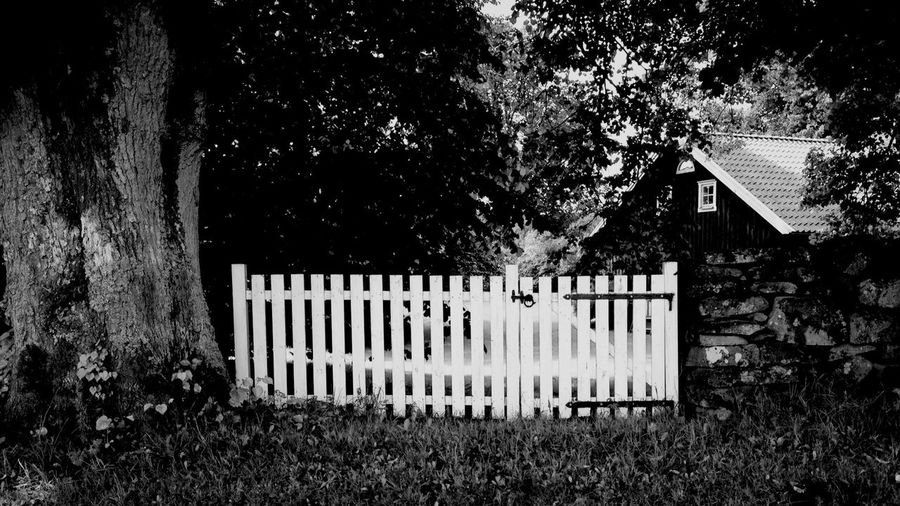 Blackandwhite Bw-collection Gate At The Gate