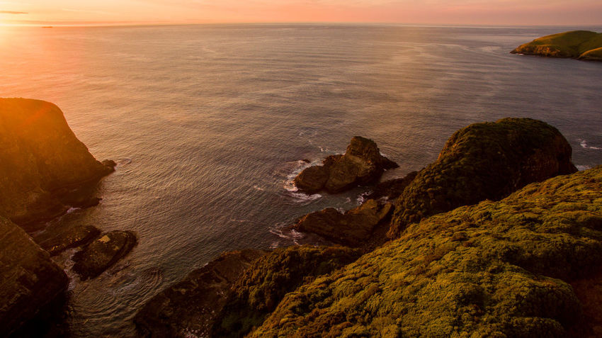 aerial drone shot over new zealand with water and farm fields Aboutpassion Aerial Landscape Beach Beauty In Nature Horizon Horizon Over Water Idyllic Land Nature No People Rock Rock - Object Rock Formation Rocky Coastline Scenics - Nature Sea Sky Solid Sunset Tranquil Scene Tranquility Vanlife Water