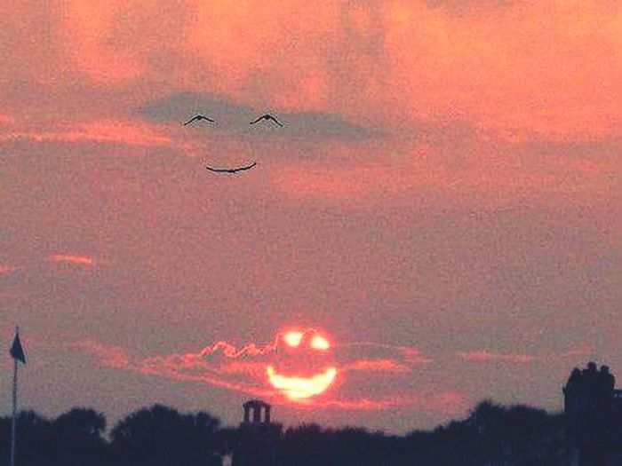 when de sun smile de birds are happy too