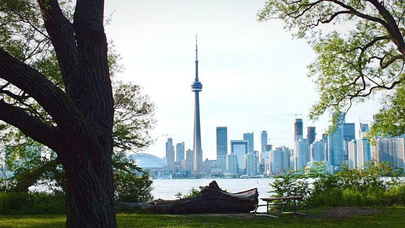 Cityscape Toronto Ontario, Canada Skyline Travel Destinations Toronto Island Skyscraper Architecture Urban Skyline Beauty In Nature CN Tower Rogers Centre Canada 150 The Traveler - 2018 EyeEm Awards