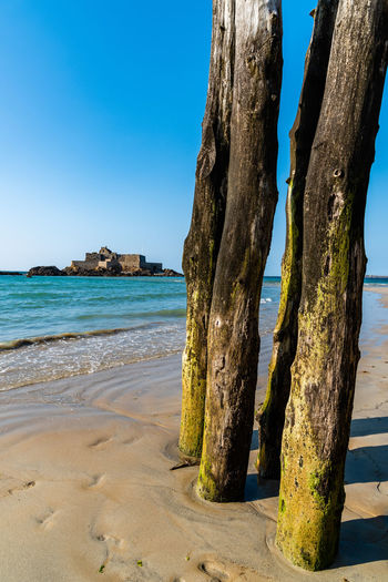 Wooden poles in the beach of Saint-Malo Day Nature Sky Outdoors City Town Saint-Malo Cityscape Travel Brittany French Europe European  Destination Wooden Pole Sea Water Land Beach Tranquility Beauty In Nature Scenics - Nature Horizon Over Water Tranquil Scene Sunlight No People Horizon Blue Clear Sky Sand Tree