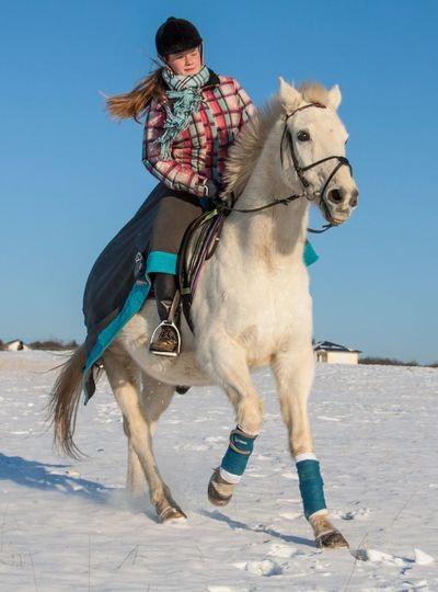 My Year My View Riding Domestic Animals Horse One Person Snow Winter