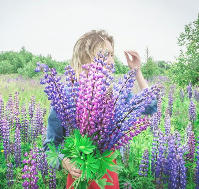 Flower Nature Outdoors Plant Field Growth Summer Beauty In Nature Beauty Day Lifestyles Nature Summertime Russia Herb Summer Vibes Travel Photography Flowers,Plants & Garden Fields Photography Folklife Nature_ Collection  Nature_ Collection  Freshness Wildflower An Eye For Travel
