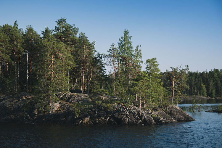 Archipelago Baltic Finland Nature Nature Photography Trees Wood Europe Island Lake North Outdoor Road Trip Sea
