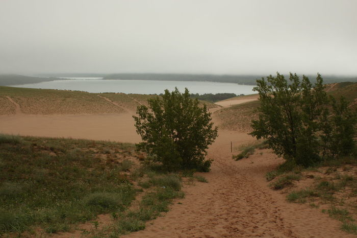 Rainy Morning at Sleeping Bear Dunes not only did the weather allow for some nice photos, it also kept the other tourists away and out of them... Foggy Weather Pure Michigan Arid Climate Beach Beauty In Nature Day Droplets Droplets, Water Droplets, Flowers  Environment Foggy Morning Growth Horizon Land Landscape Nature No People Outdoors Plant Sand Scenics - Nature Sky Sleeping Bear Dunes Sleeping Bear Dunes National Lakeshore Tranquil Scene Tranquility Water