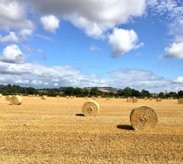 Hay bales on field against sky