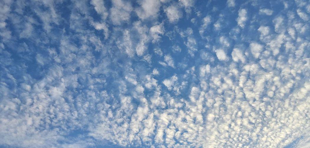 Sky chang every