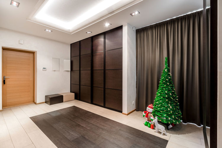 Interior of entrance hall with christmas tree Christmas December Entrance Hallway Hanging Out Holiday Home Light Merry Christmas! New Year Room Winter Christmas Decoration Christmas Tree Design Door Entrance Hall Entrance Halls Home Interior House Indoors  Interior Interior Design Lighting Residential Building