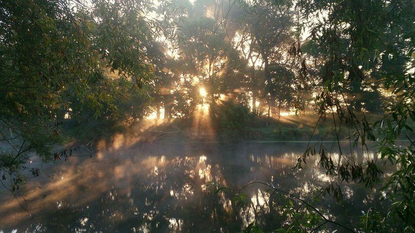 Enjoying The Sun Foggy Morning Wonderful Relaxing Sunrise Sunrise/Sunset Sunray Beautiful Sunrise Amazing Sunrise Morning Sunrise