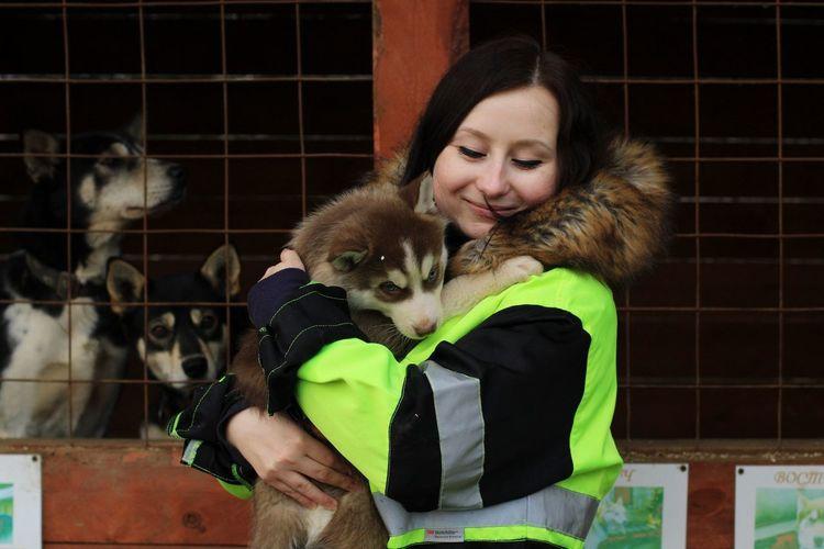 Husky Puppy Husky Huskyphotography Warm Clothing Vet  Friendship Pets Child Agriculture Dog Happiness Winter Young Animal Animal Pen Farmland