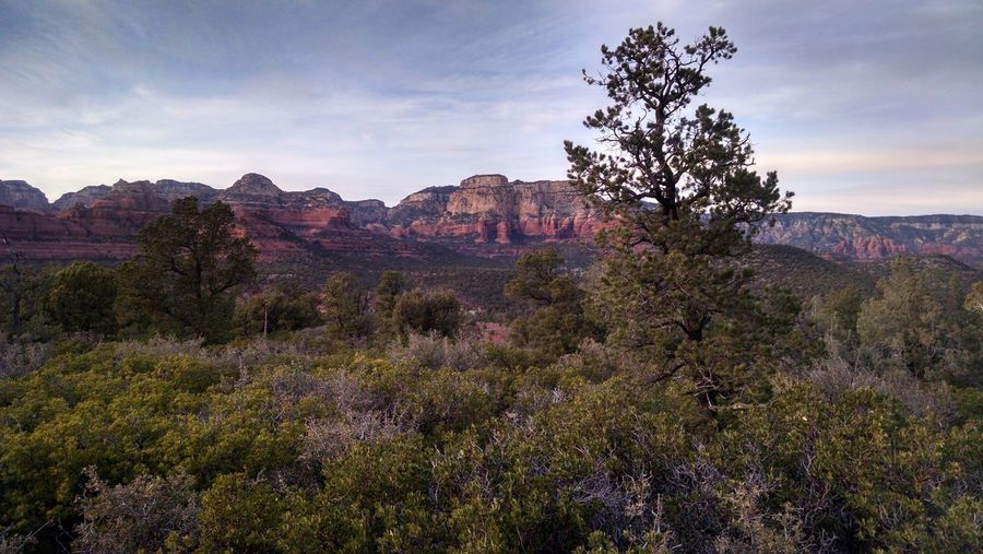 Landscape Sunset Mountain Travel Beauty In Nature Travel Destinations Nature Scenics No People Outdoors Day Rocks Leisure Activity Arizona Sedona Lost In The Landscape Perspectives On Nature