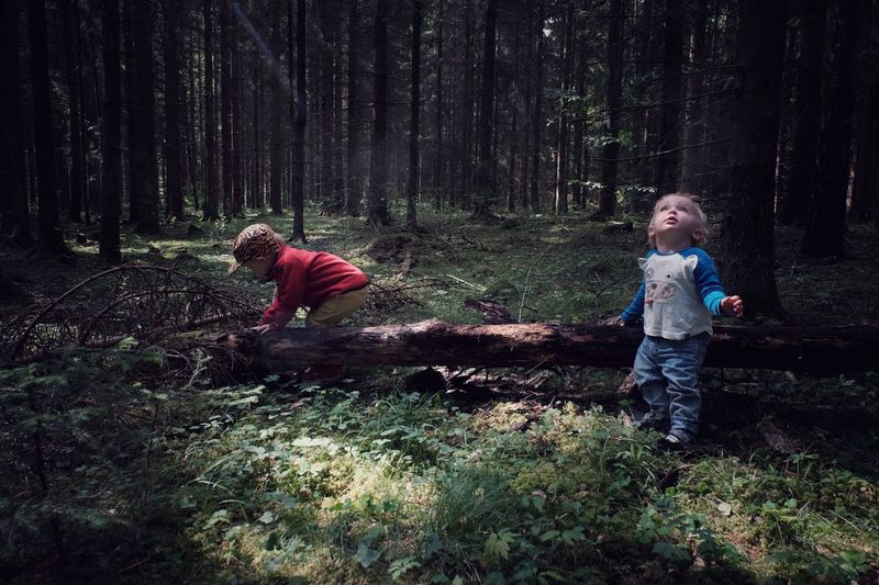 The Magic Forest Childhood Casual Clothing Females Plant Tree Girls Land People Lifestyles Sibling Sister Full Length Real People Leisure Activity Nature The Portraitist - 2018 EyeEm Awards