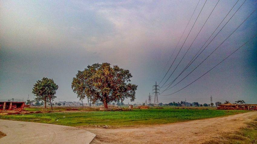 Its green its pakistan Enjoying Life InPakistan Greenery Itsgreenitspakistan Gujranwala Pakistan Nature Beautiful Amazing View Photography
